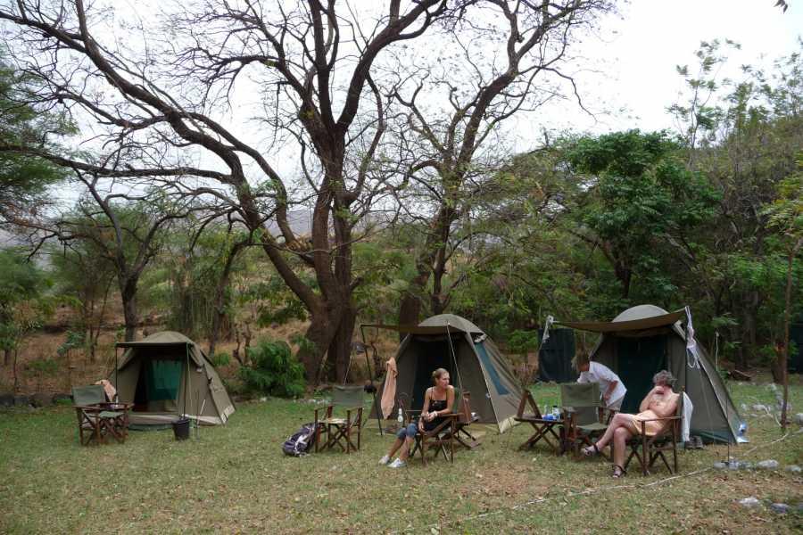 ECO-AFRICA CLIMBING 6 DAYS TANZANIA CAMPING SAFARI