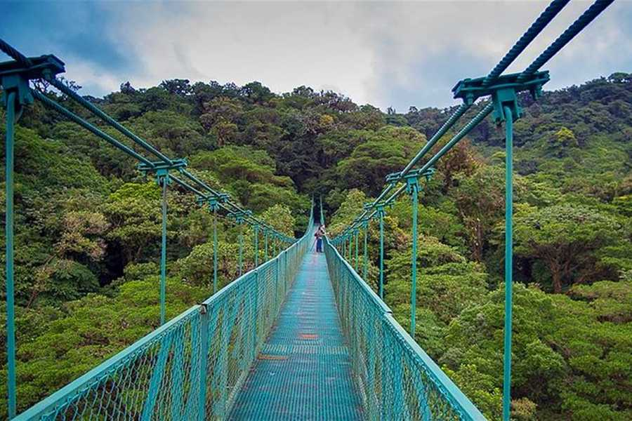 Tour Guanacaste Monteverde Cloud Forest Eco-Tour