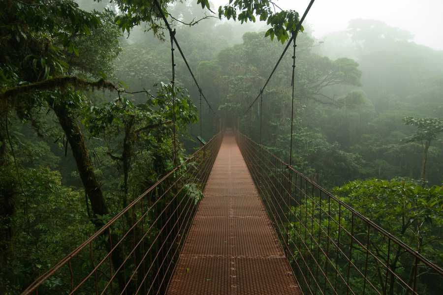 Tour Guanacaste Monteverde Cloud Forest