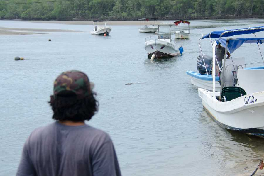 Tour Guanacaste Tamarindo Mangrove Estuary Boat Tour