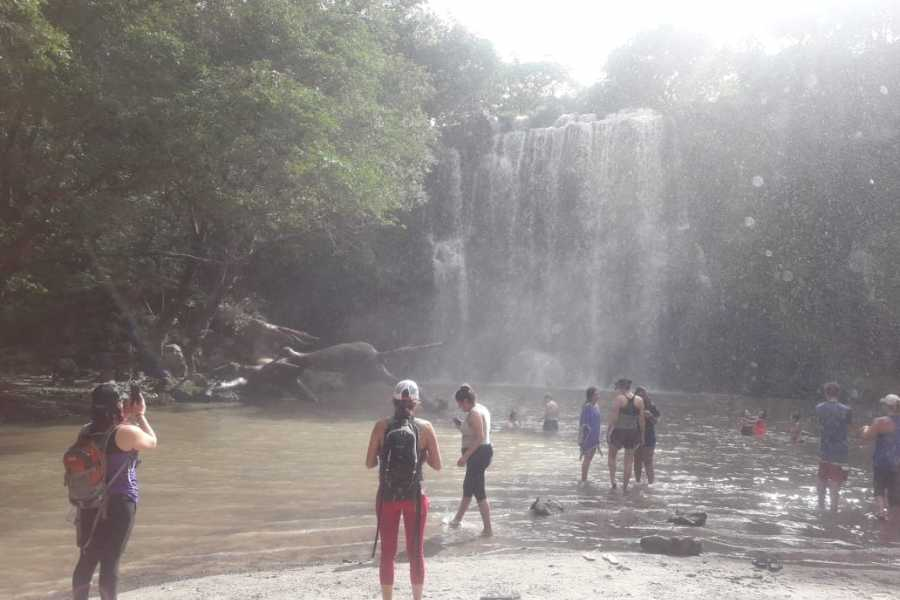 Tour Guanacaste On-Line Rio Celeste and Cortés Waterfall Day Trip