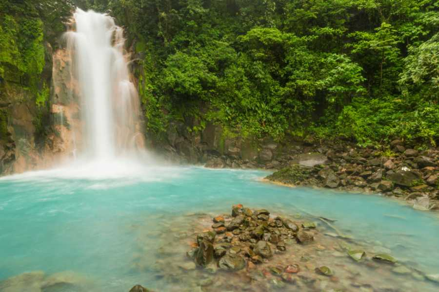 Tour Guanacaste Rio Celeste Blue Waterfall Trip