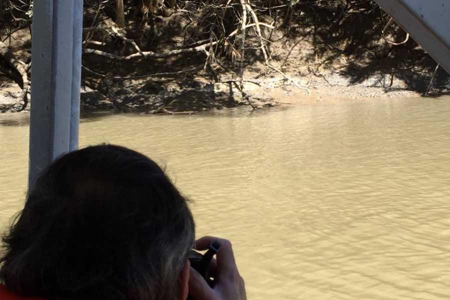 Tour Guanacaste Palo Verde Wildlife River Boat Cruise