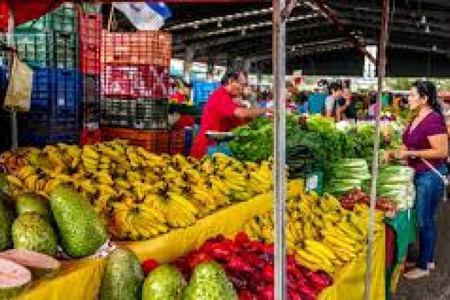 Tour Guanacaste Playa Potrero - Tamarindo Transportation