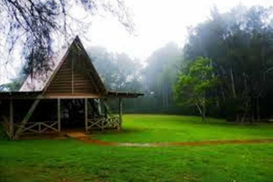 Dream Vacation Builders Plan Aloha-5: Molokai Paquete