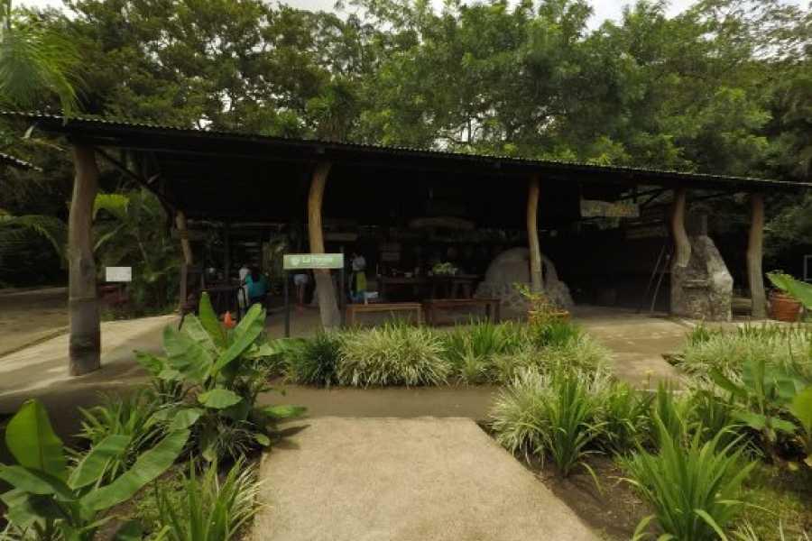 Tour Guanacaste Buena Vista Mega Combo Day Pass