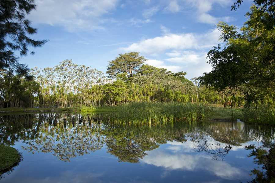 Tour Guanacaste On-Line Buena Vista Volcano Eco-Adventure Day