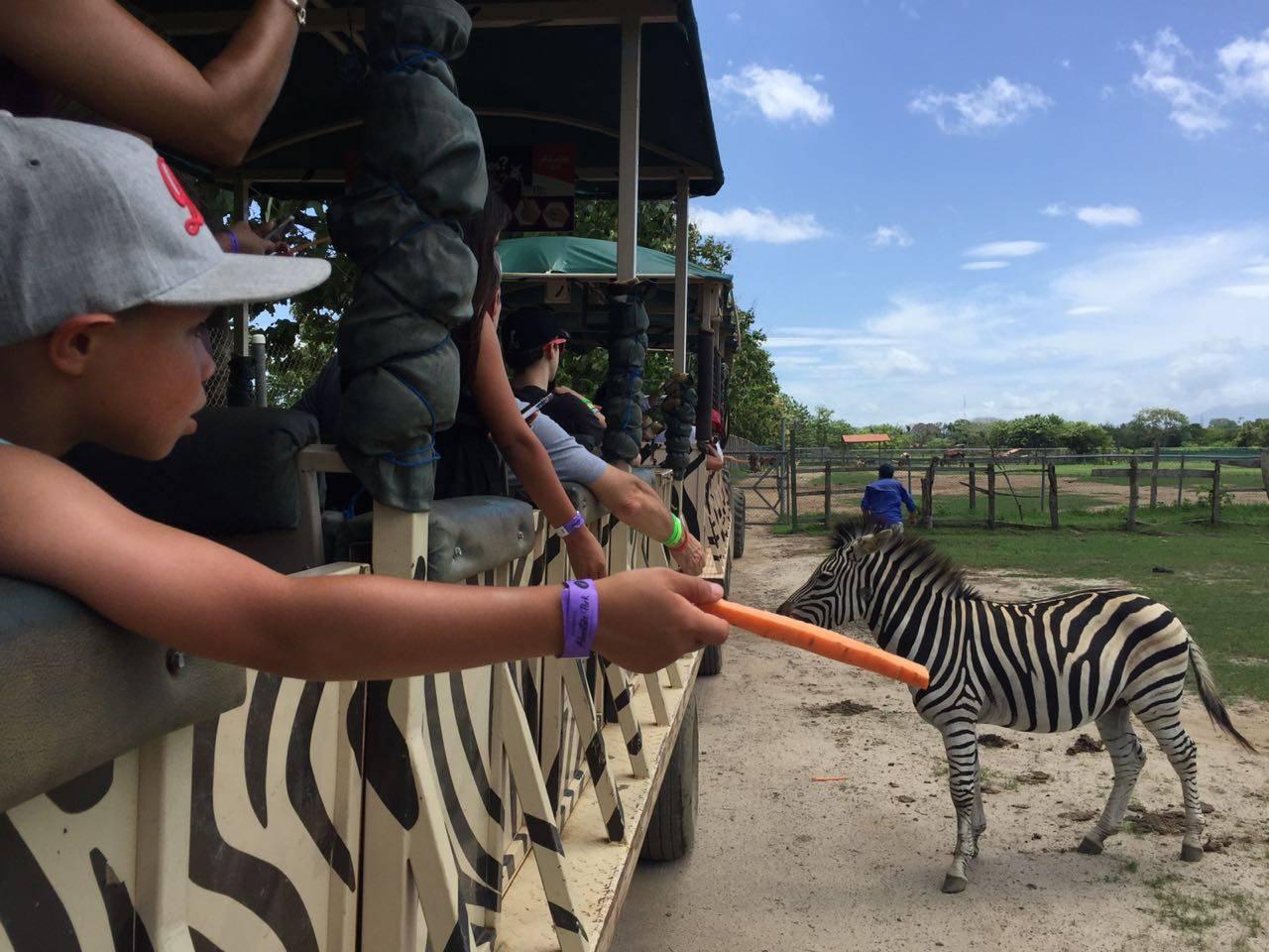 Africa Safari Adventure Park Day - Tour Guanacaste, bringing Costa