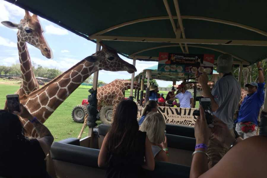 Tour Guanacaste On-Line Africa Safari Adventure Park Day