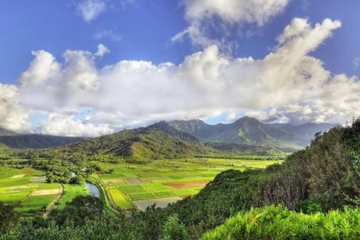 Dream Vacation Builders One Day Kauai Movie Tour