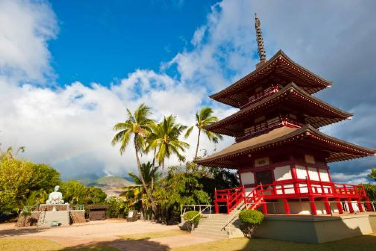 Dream Vacation Builders Maui-Iao Valley & Lahaina Tour