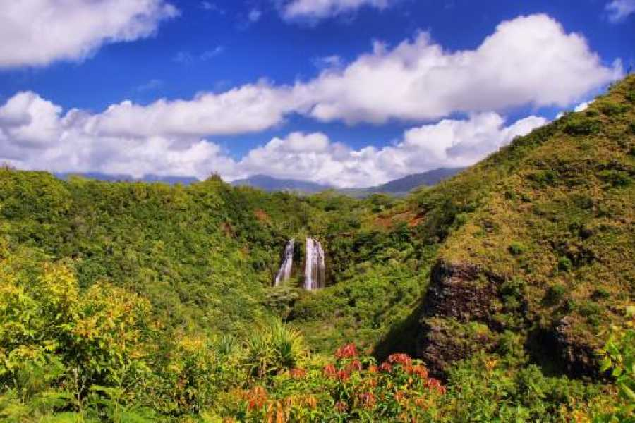 Dream Vacation Builders Kauai Hawaii Movie Tour