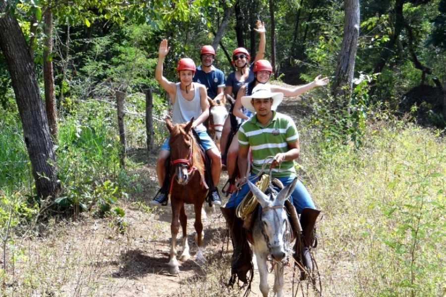 CongoCanopy.com ATV Horseback Monkey Combo