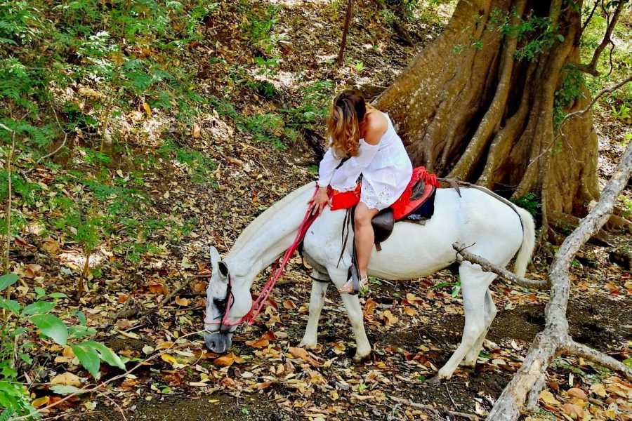 Congo Canopy ATV Horseback Monkey Combo