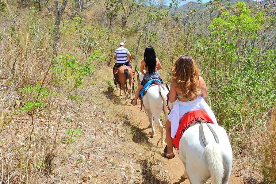 Congo Trail Canopy Tour ATV + Horseback+ Monkey Combo