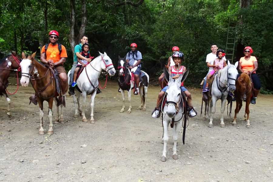 Congo Canopy Canopy Zip-Line and Horseback Combo
