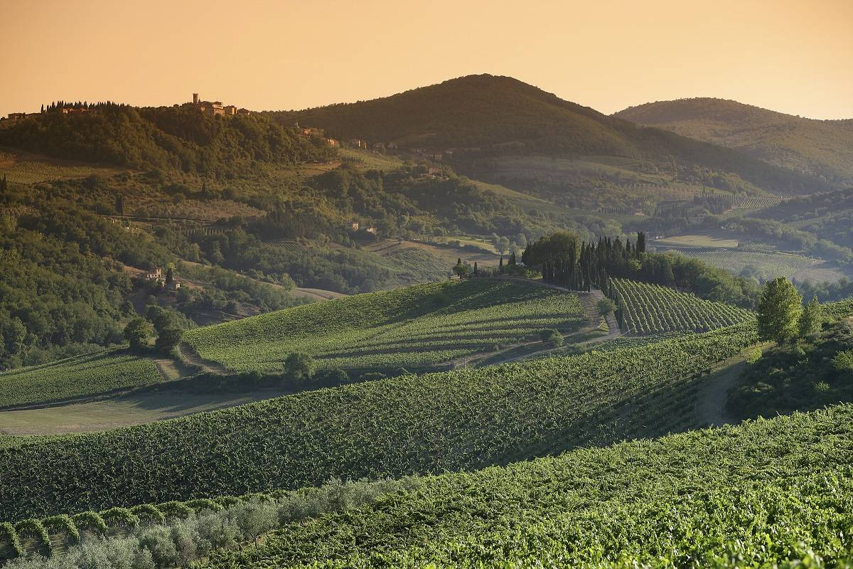 Winetouritaly.com CHIANTI CLASSICO PRIVATE TOUR