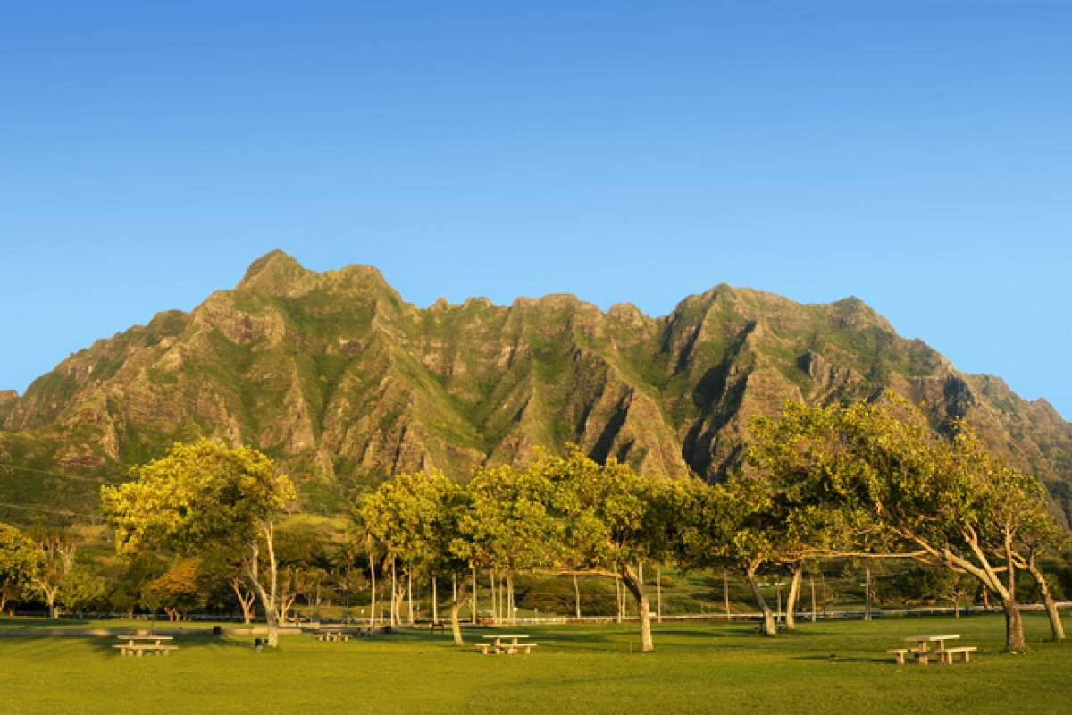 Dream Vacation Builders Oahu Grand Circle Island, Kualoa Ranch & Dole Pineapple Plantation