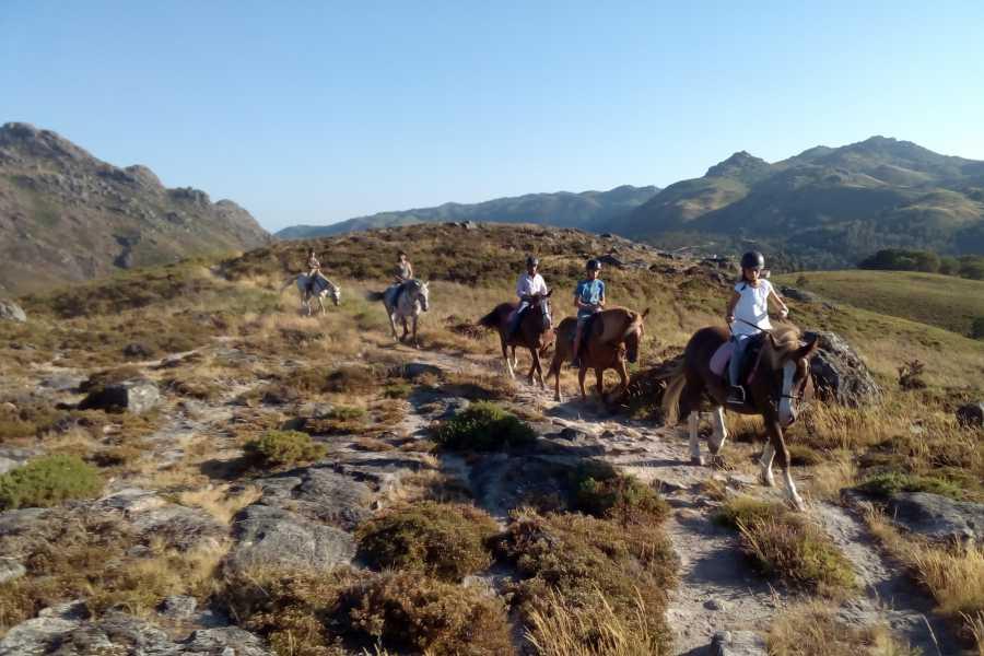 Gerês Holidays 7D/6N Turismo Equestre no Gerês