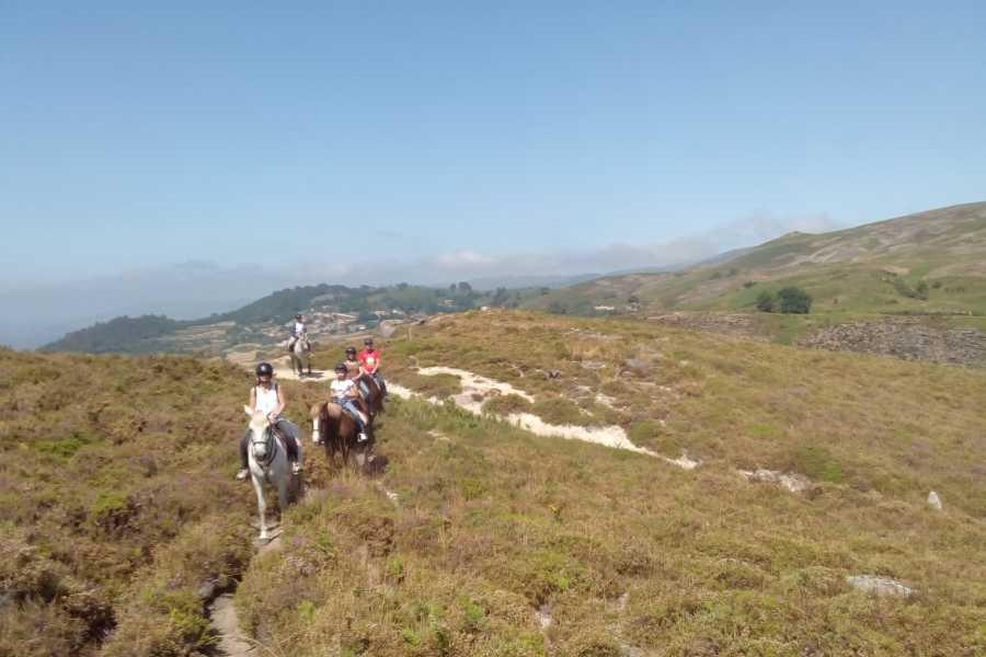 Gerês Holidays 7D/6N Equestrian Tourism in Gerês