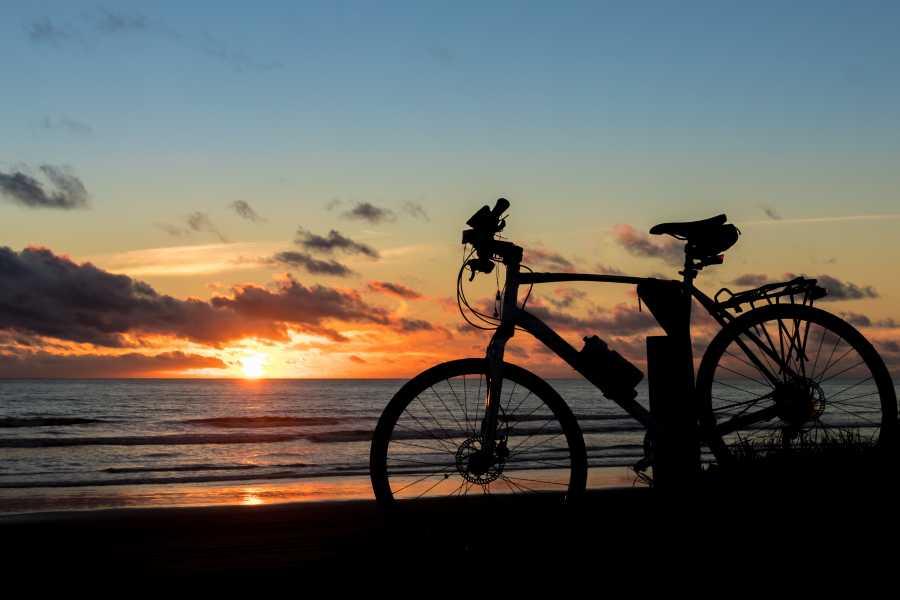 Krain Concierges Beach Bike Daily Rental