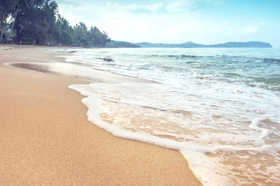 Krain Concierges Paddle Board Daily Rental