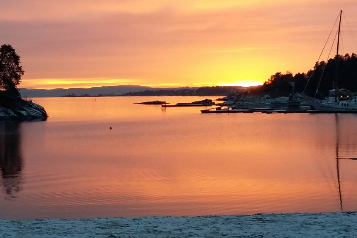 viking biking Oslo Nature Walks: Island Hopping