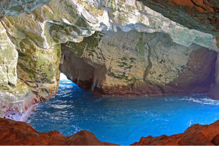 Route 876 Tours Cave Adventure and Columbus Park from Montego Bay