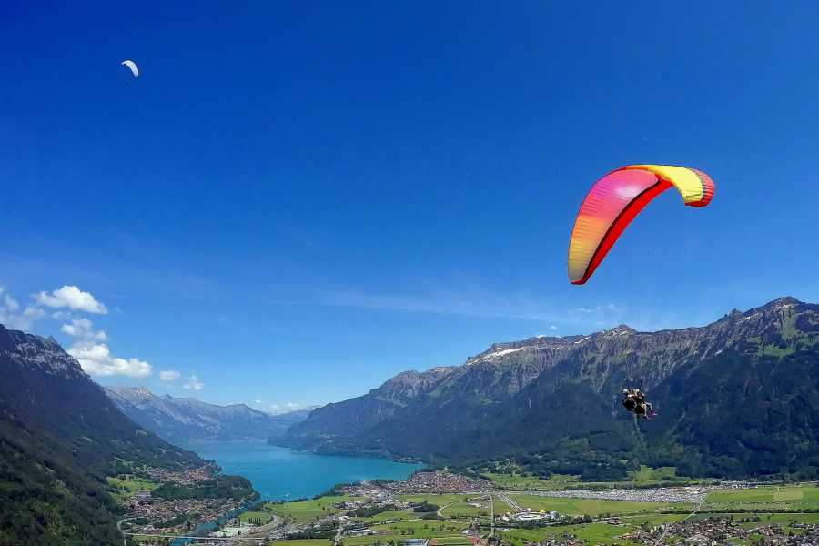 AlpinAir Paragliding Interlaken Paragliding 'Top Flight'