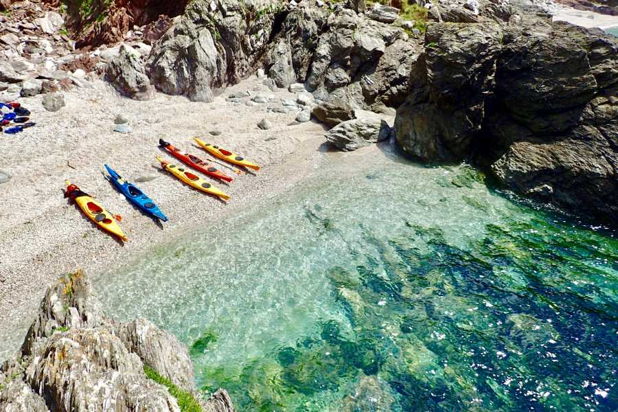 Sea Kayak Devon Ltd -Young Family Half Day- (kids 5 to 11)