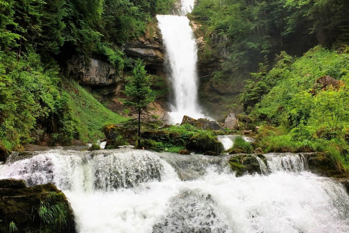 Happybananabus Happy Banana Bus Scenic Lake and Waterfalls Tour