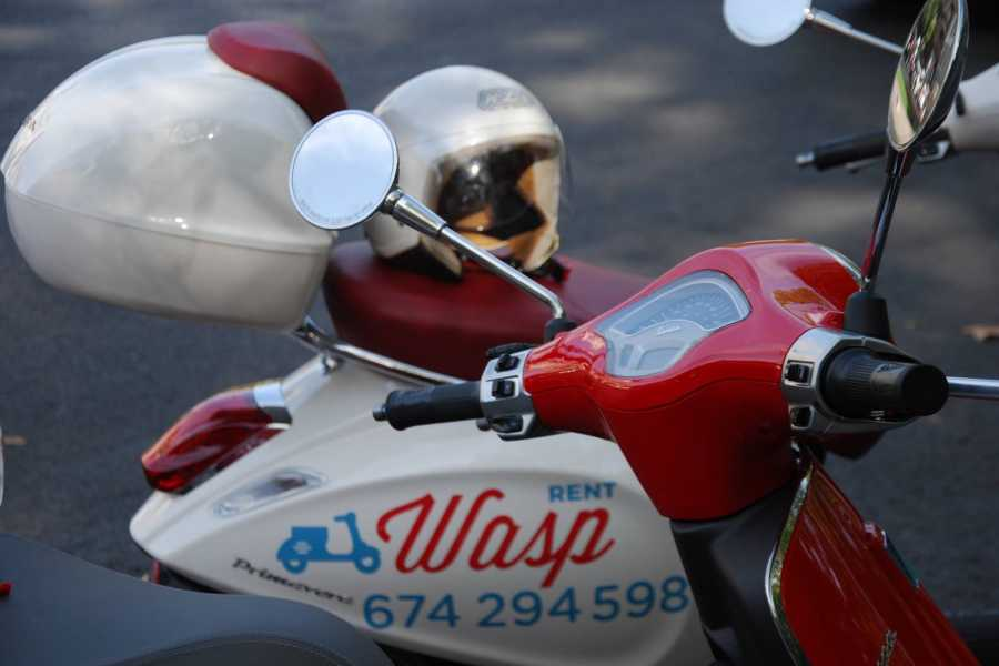 Urban Safari Tours Vespa: Guided tour + Driver + Tapas / Picnic