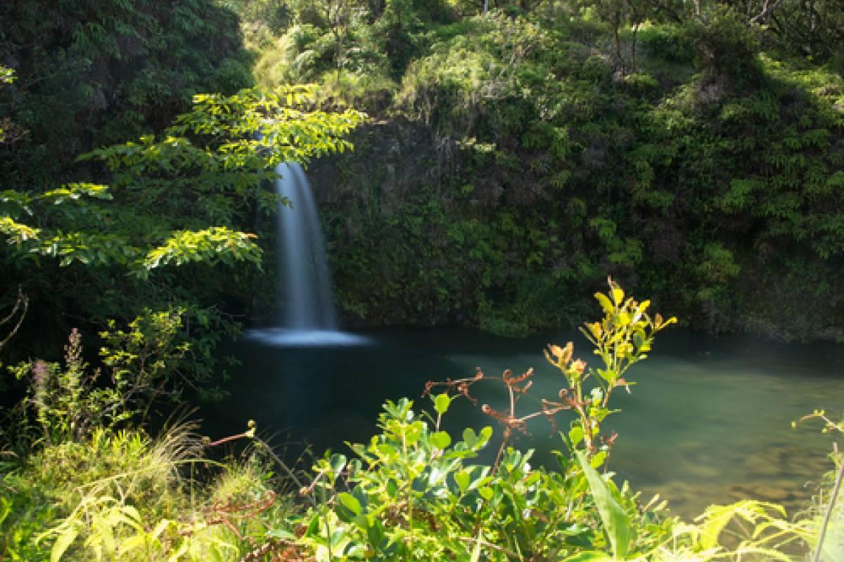 Dream Vacation Builders Oahu to Maui: Hana Highway Adventure Tour