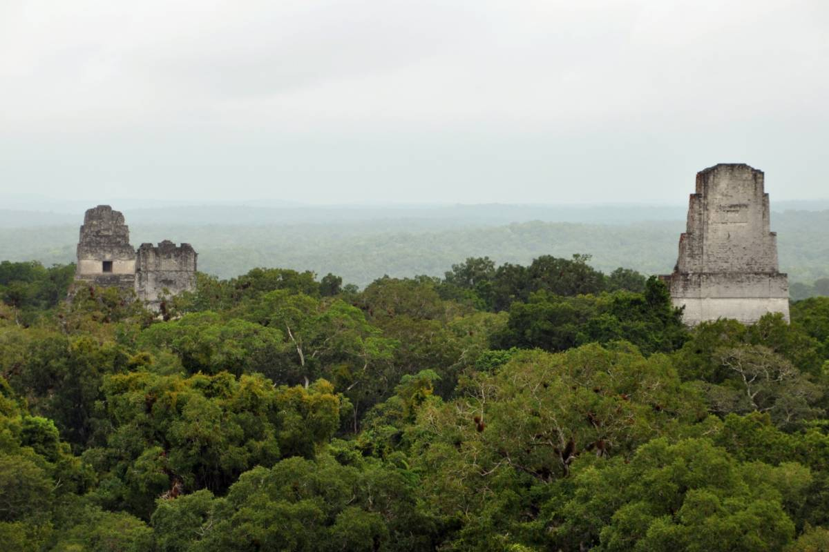 Gem Trips Tikal in Group (7 to 14 guests)