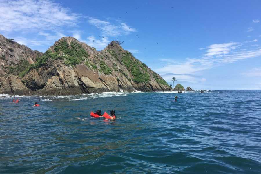 Uvita Information Center Tour de observación de ballenas y delfines
