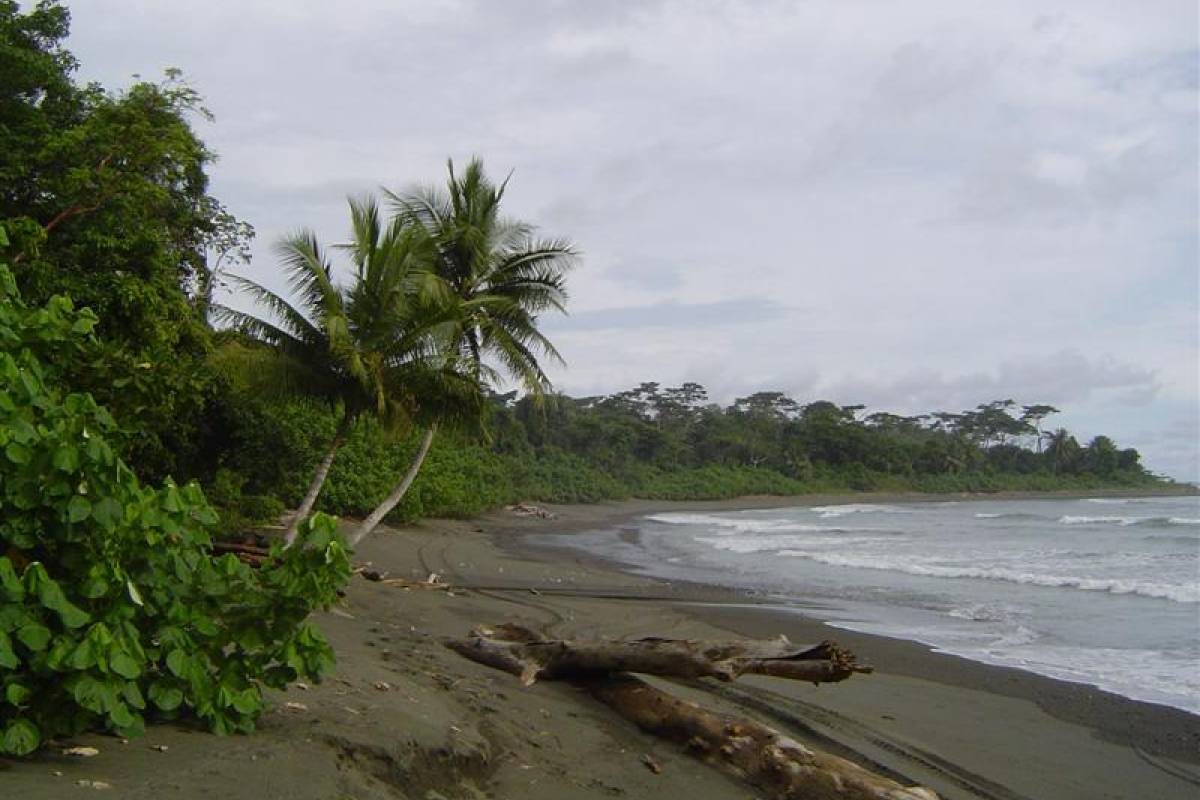Uvita Information Center Corcovado National park - full day from Sierpe