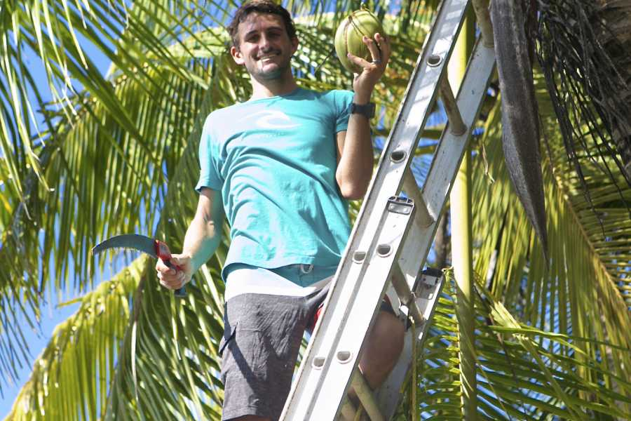 Pura Vida Casas Adventures Lessons: Surfing