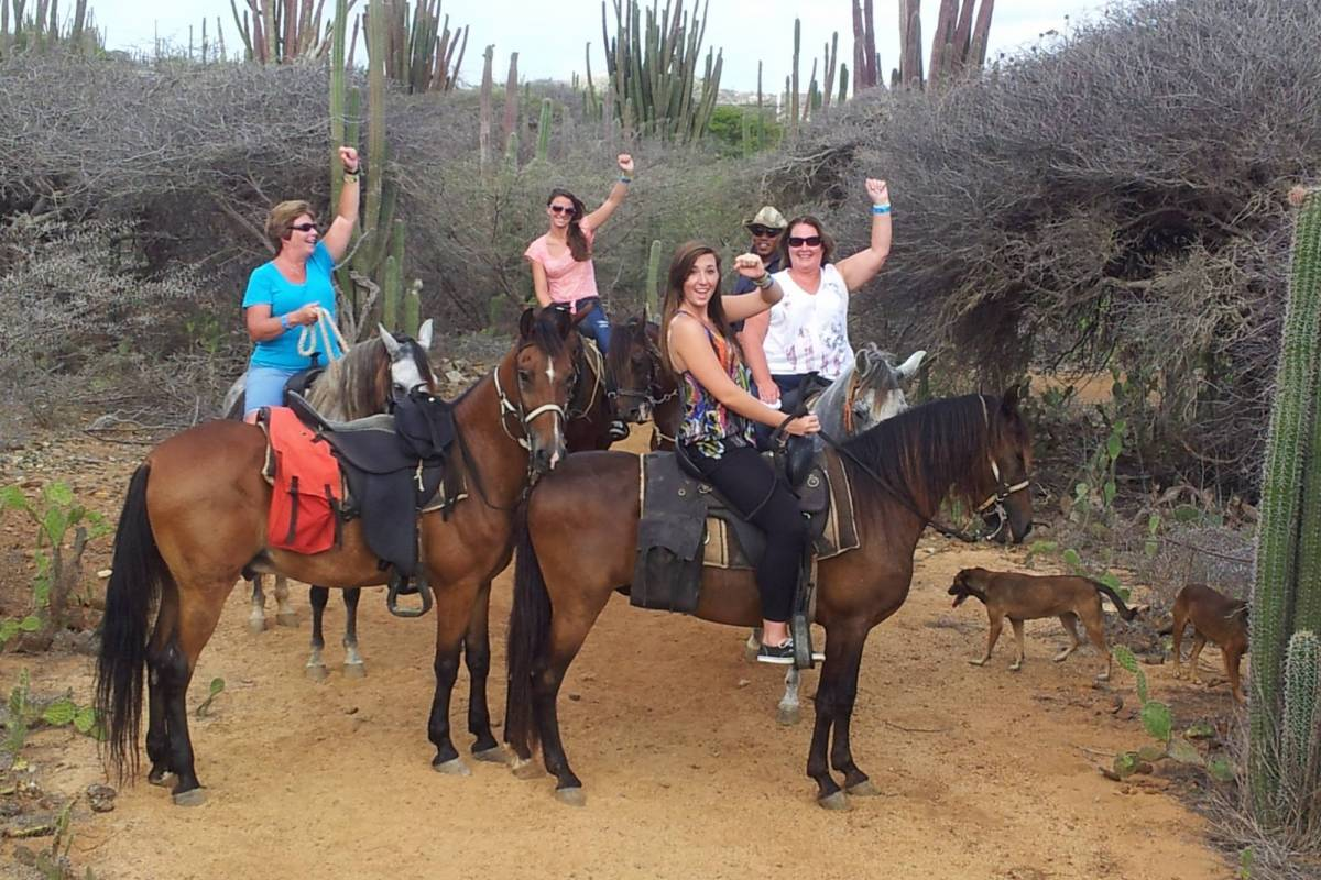 Rancho Loco Andicuri Beach Private Tour
