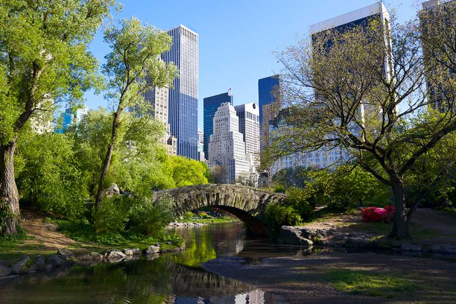 SANDEMANs New York Tours The Very Best of New York's Central Park Tour