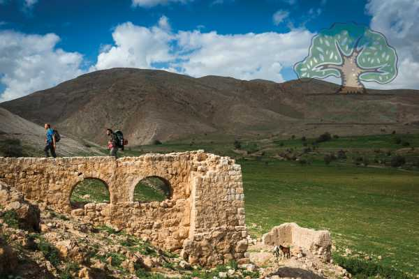 10 - 11 November 2018, Kafr Malek to Jericho, Masar Ibrahim Thru Hike