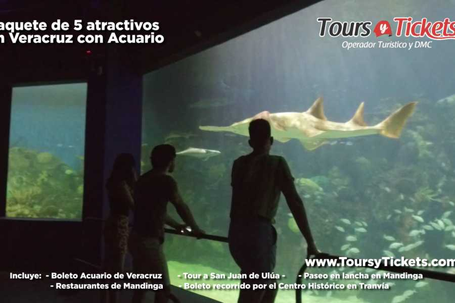 Tours y Tickets Operador Turístico 韦拉克鲁斯八大景点套餐(包含博物馆)
