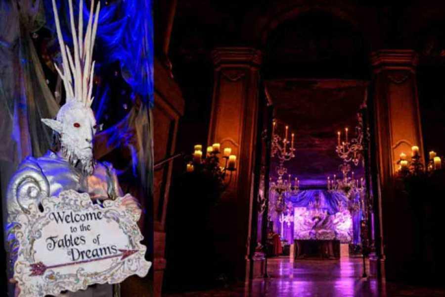 Venice Tours srl Carnival Ballo del Doge