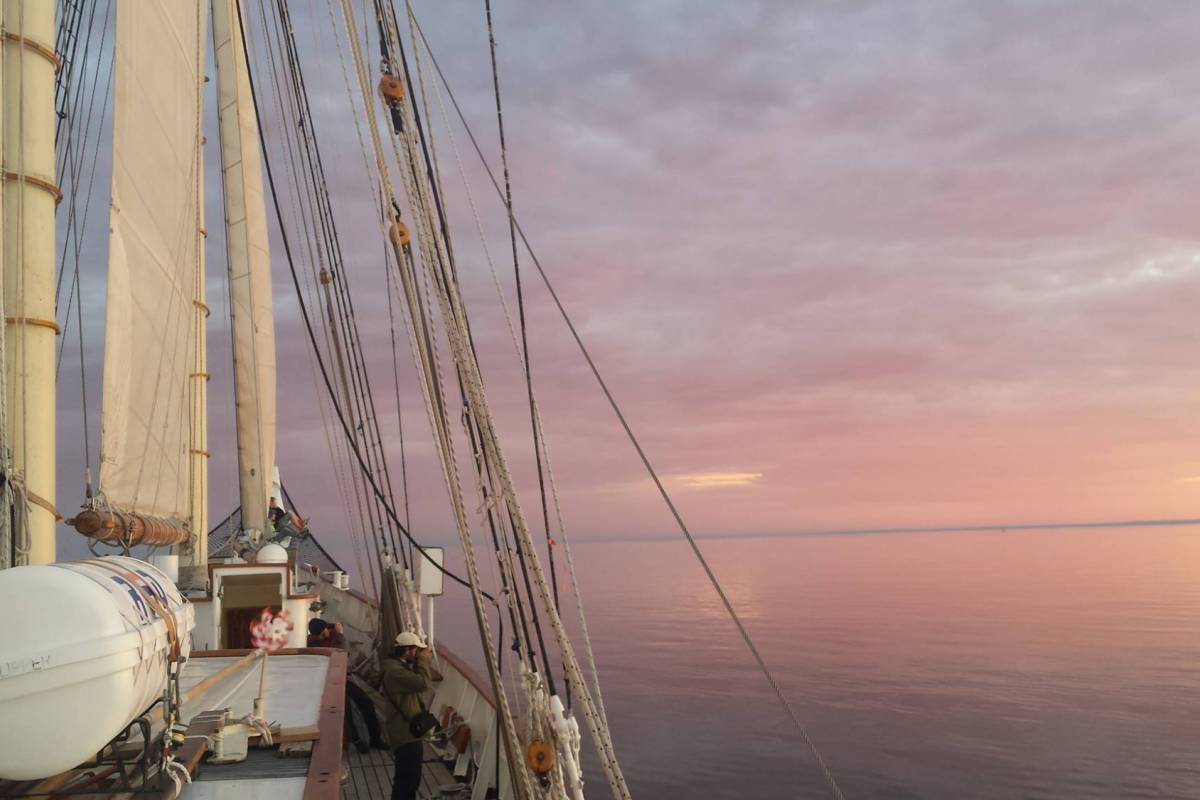 Maybe Sailing Journey of the Midnight Sun