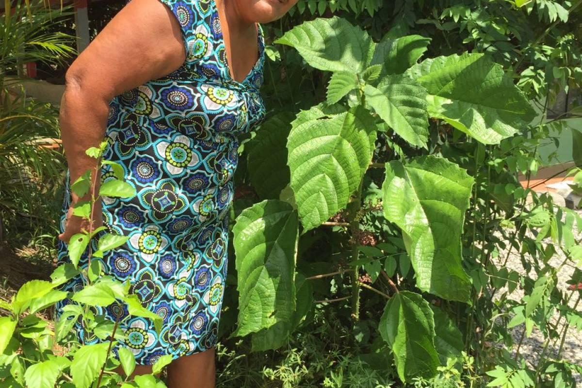 Uvita Information Center Medicinal Plants Tour