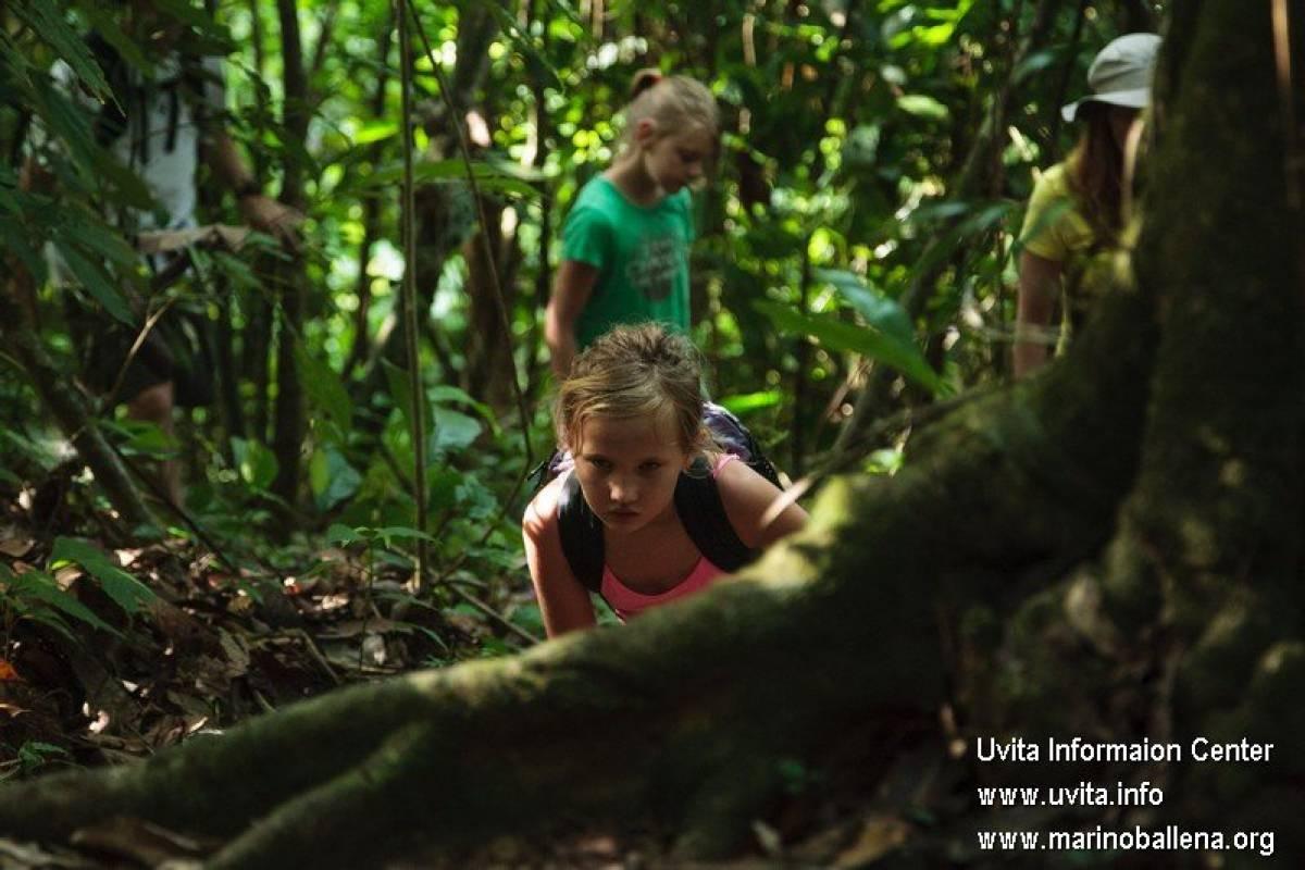 Uvita Information Center Lowland Birdwatching Tour Hacienda Baru