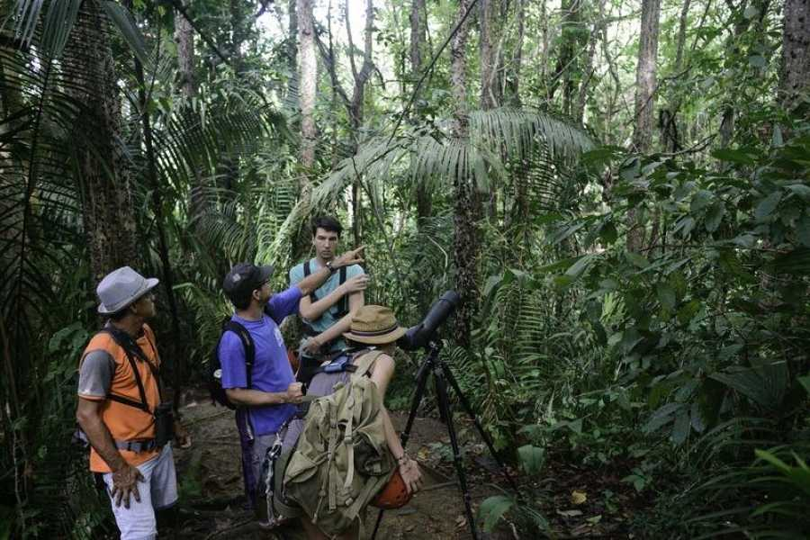 Uvita Information Center Tour de observación de aves en Hacienda Baru