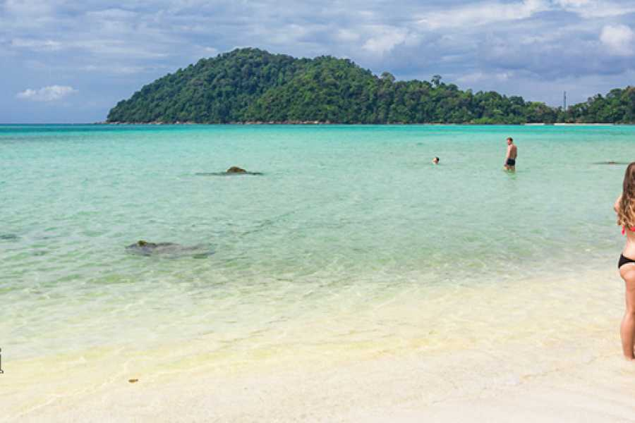 AMICI MIEI PHUKET TRAVEL AGENCY 2 DAYS IN TENT at SURIN ISLAND (from Phuket) - AM009