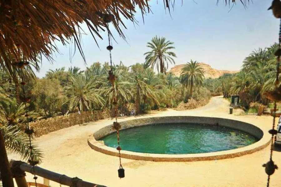 Deluxe Travel Cairo to Siwa Oasis