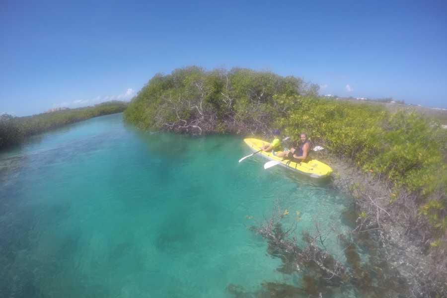 Kite Provo & SUP Provo Eco Tour Mangrove Island