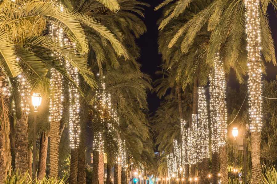 TourguideMe Stadtrundgang Palma bei Nacht
